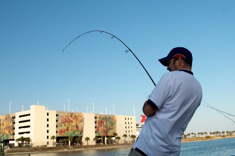 Florida2011_001.jpg