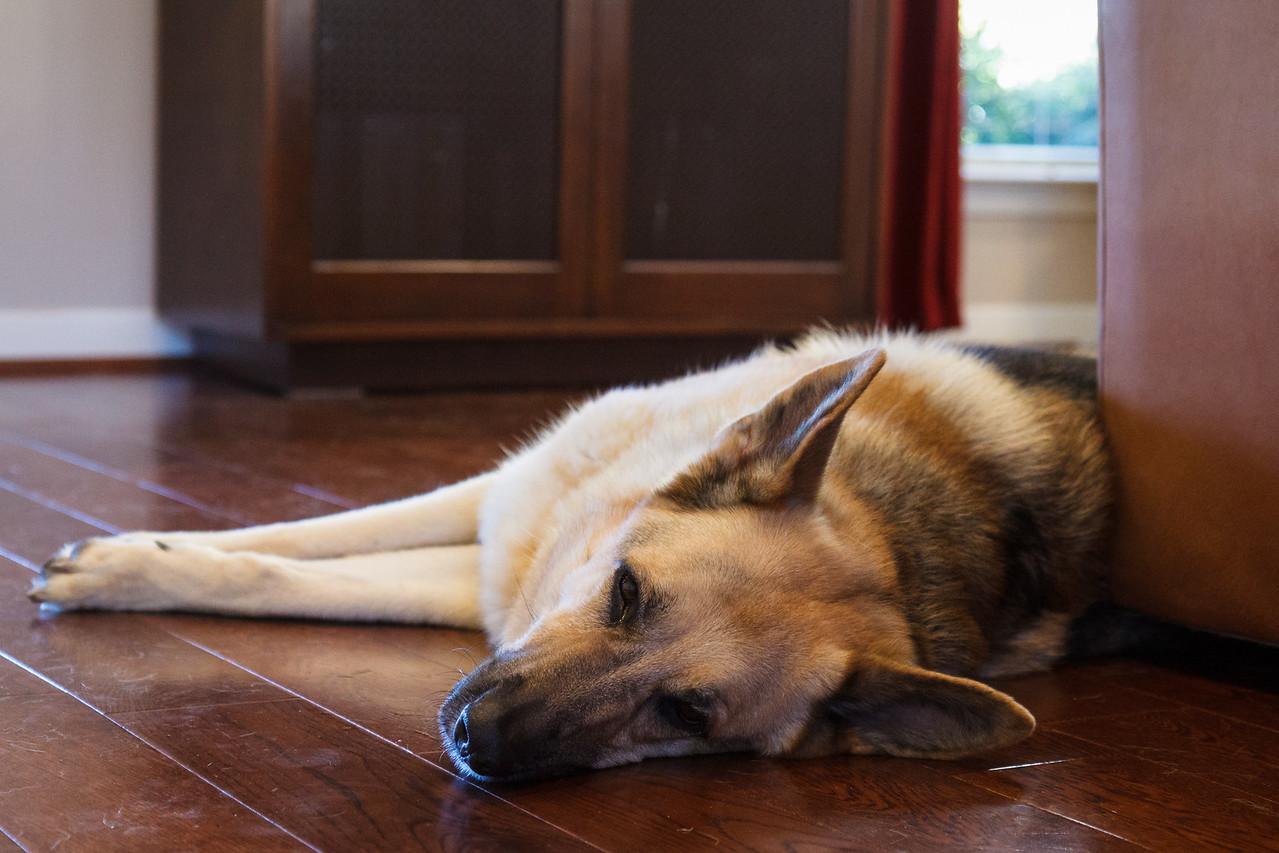 Kira, Tired