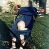Westmont Ct Jackie baby (10)