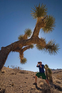 Dan Joshua Tree 6166