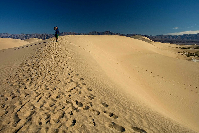 Dan Sand Dunes by Stovepipe Wells 6130