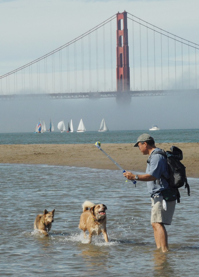 Dwaine &  Meredith Jugoz Chrissy Field, San Francisco, California