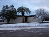 A rare occurance in Tucson -- snow. Especially snow that will weight down a mesquite tree, cover a stone yard, or even dust the streets. Images courtesy of Don Dietrich (my father)