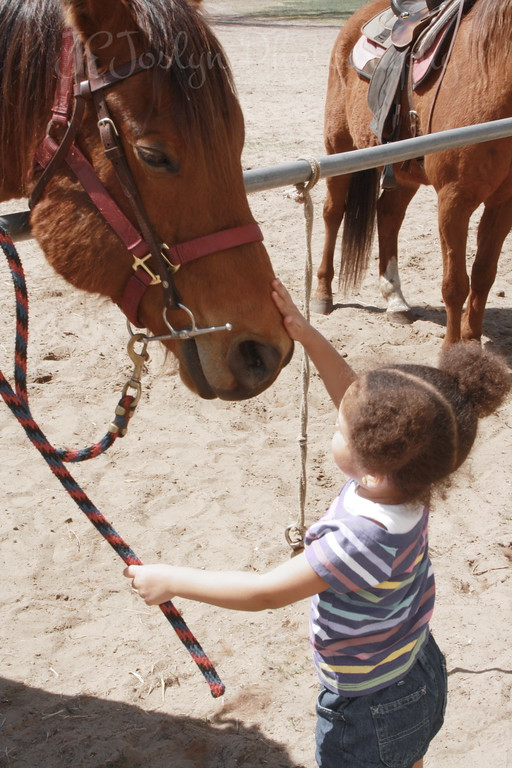 4-2010, GD4 petting horse at Bunker.  Right about now, horse sneezed on her, what a way to greet a little girl.