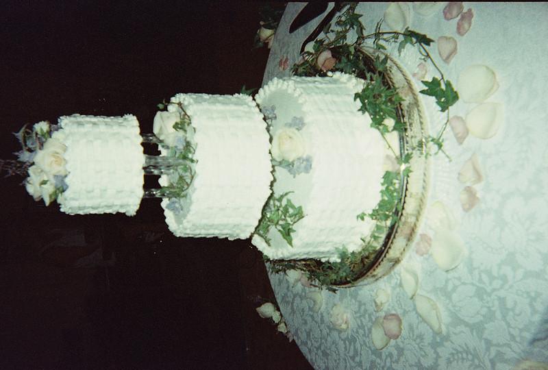 David_and_Sinead's_Wedding_5-22-1999-4