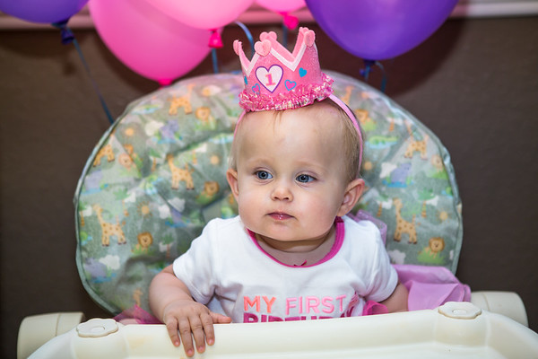2016-06-11 Tatum & Harlowes Birthday Party