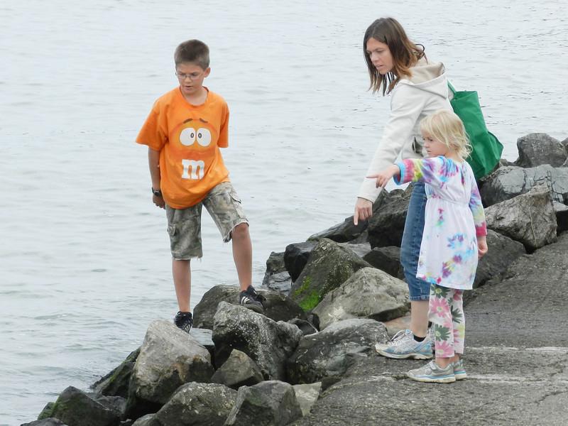 Austin, Rachel and Allegra looking for ....