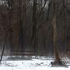 Spice Bush Swamp park in West Hartford