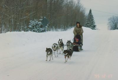1995 Dog Sledding