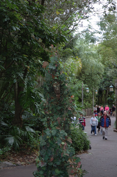 This was a women on stilts at animal kingdom.  When she is just standing there you think she is a bush or tree.  Then she starts walking aroung.