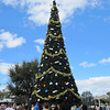 Christmas Tree, Epcot