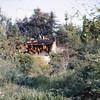 Burning house on Tom Sawyers Island