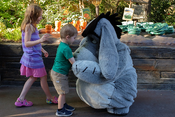 Disneyland 2016-5512