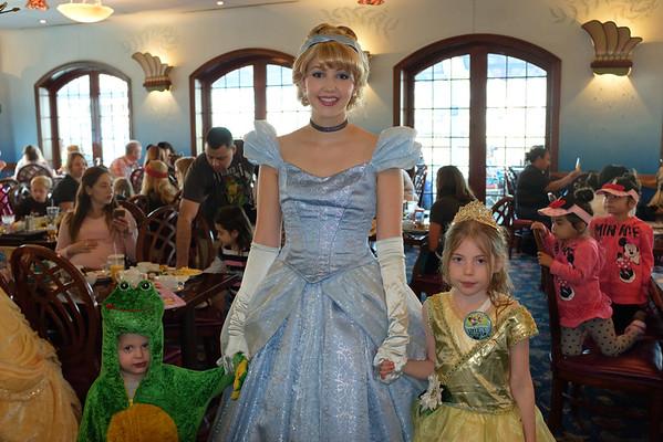 Disneyland 2016-5440