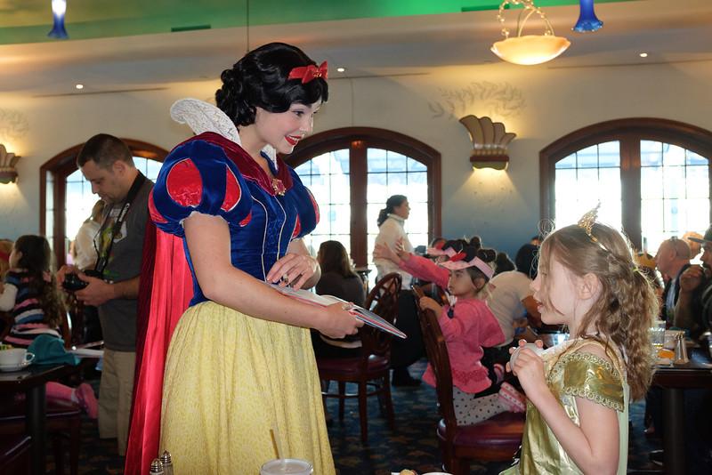 Disneyland 2016-5431