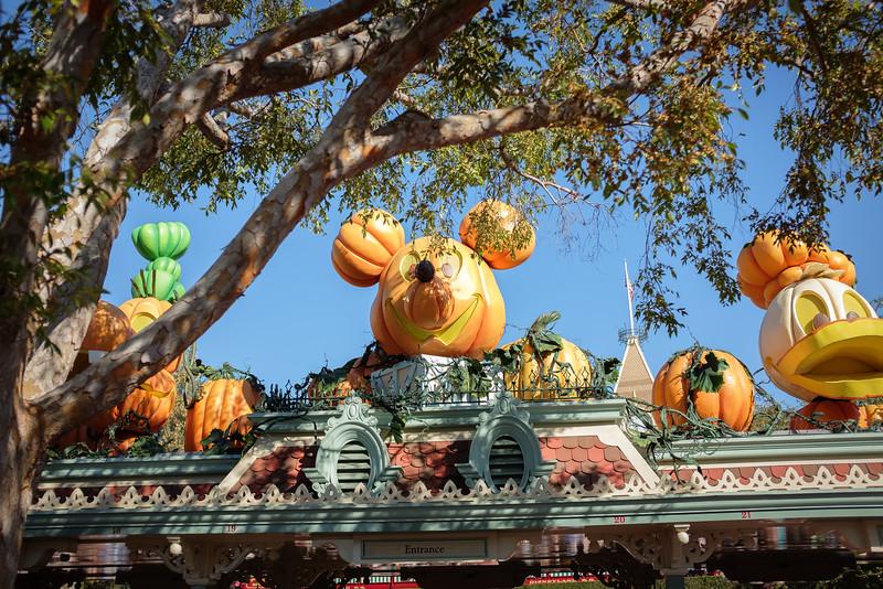 Disneyland 2016-4956