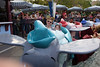Disneyland 2016-5076