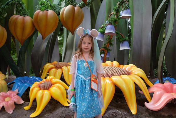 Disneyland 2016-5156