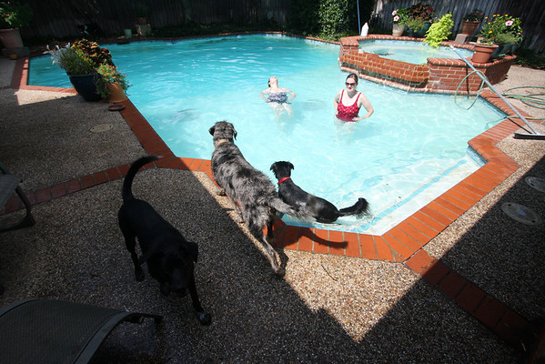 Dogs and girls...pool time!! June '10