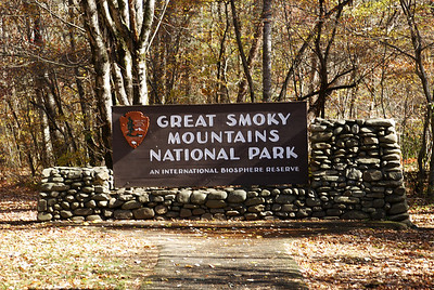 On the way home, I drove through the Great Smoky Mountains National Park