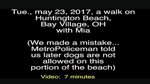 Video:  7 minutes ~~ Mia, Tue, May 23, 2017 at Bay Village, Huntington Beach, OH (Lake Erie)