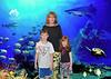 G,D,L aquarium