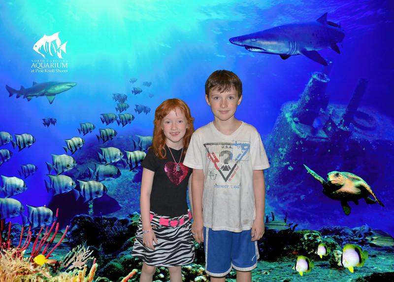 L, D aquarium