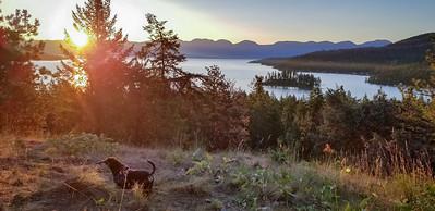 Augie at Flathead Lake 2019