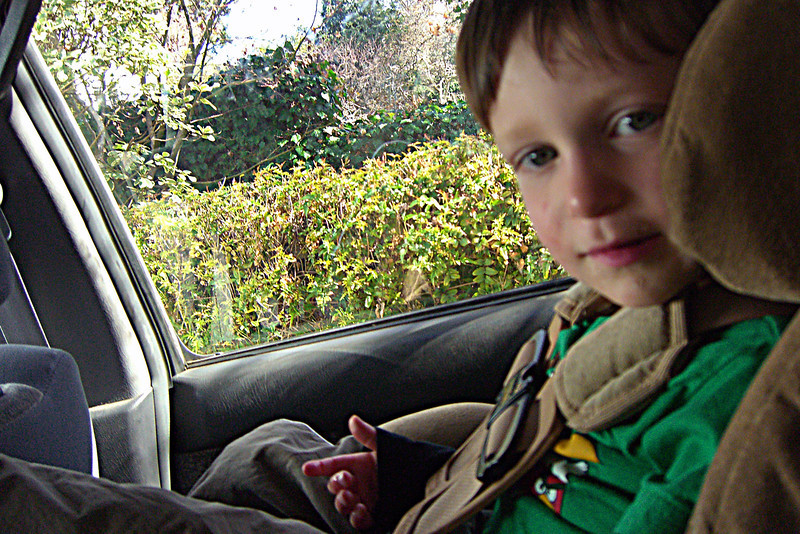 Karl in car