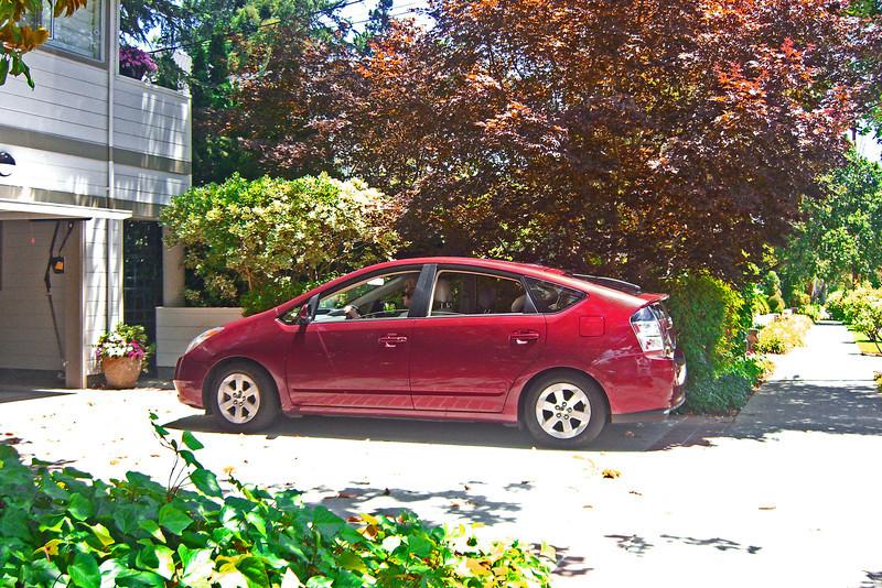 Bubbie in the driveway