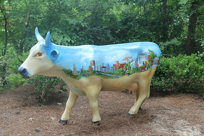 Durham Traveler Cow - displayed at the Museum of Life & Science