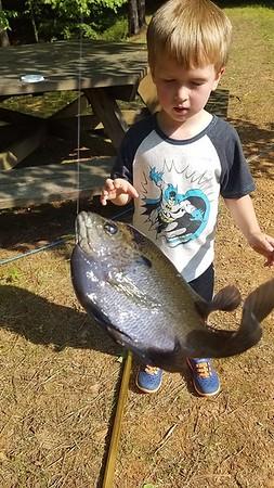 caught a bluegill!