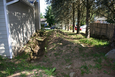 The ditch in the side yard
