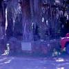 1964-10 - Cemetery at Savannah River
