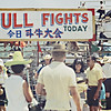 Bull Fights - Entrance