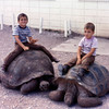 1973-09 - Reptile Garden tortoises with Randy and Jeff
