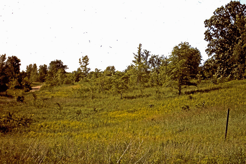 1974 - Lot before being mowed