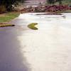 1977-06 - Flooded yard - east side of garage