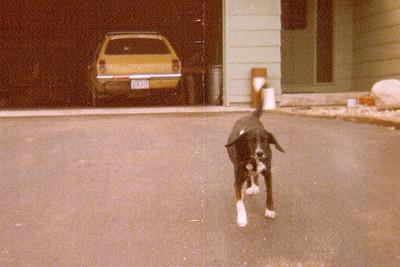 1975 - Burt and the Vega