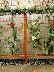 Neat fence idea -- on Christmas home tour