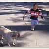 Walkin the Dog (71749109)