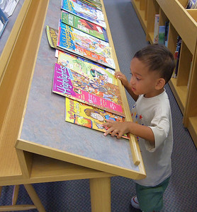 Checking out the library (84045637)