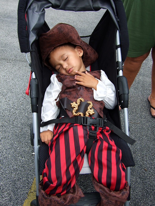 A Pooped Pirate (88129055)