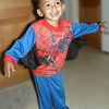 spiderman spreads his wings (89090043)