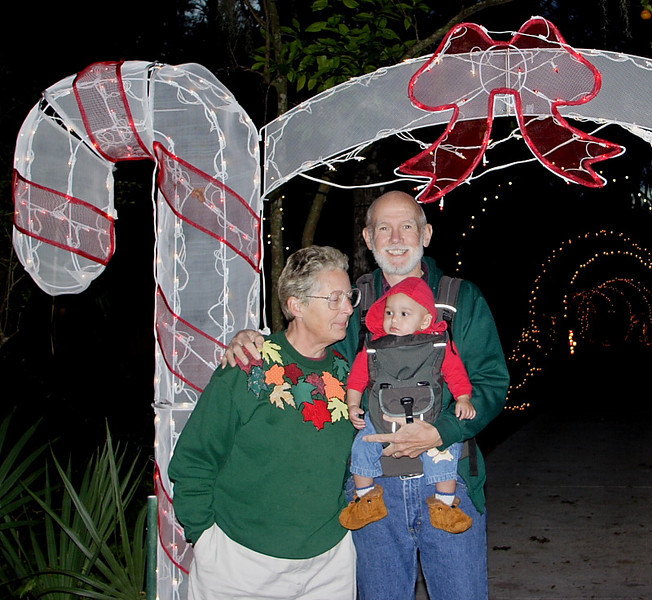 Night of Lights Homosassa Park (53945612)