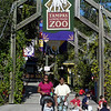 At the zoo (89471130)