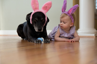 Grover not thrilled we put the bunny ears back on. Savannah gave him an egg trying to cheer him up!