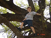 Carter in the BIG tree at the Pecan Bottom outside of Gorman Texas, Joiner Egg Hunt