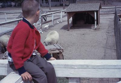 Gary Williamm S Hart Ranch