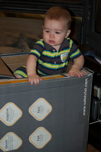 Edmund in his play box . . . but can't figure out how to get back out.
